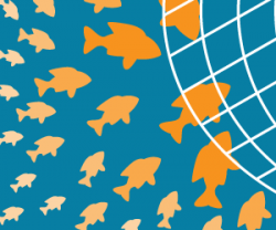 Inbound Marketing for Law Firms: Let the Fish Swim into Your Net